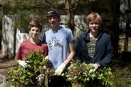 Students help remove destructive garlic mustard around campus.